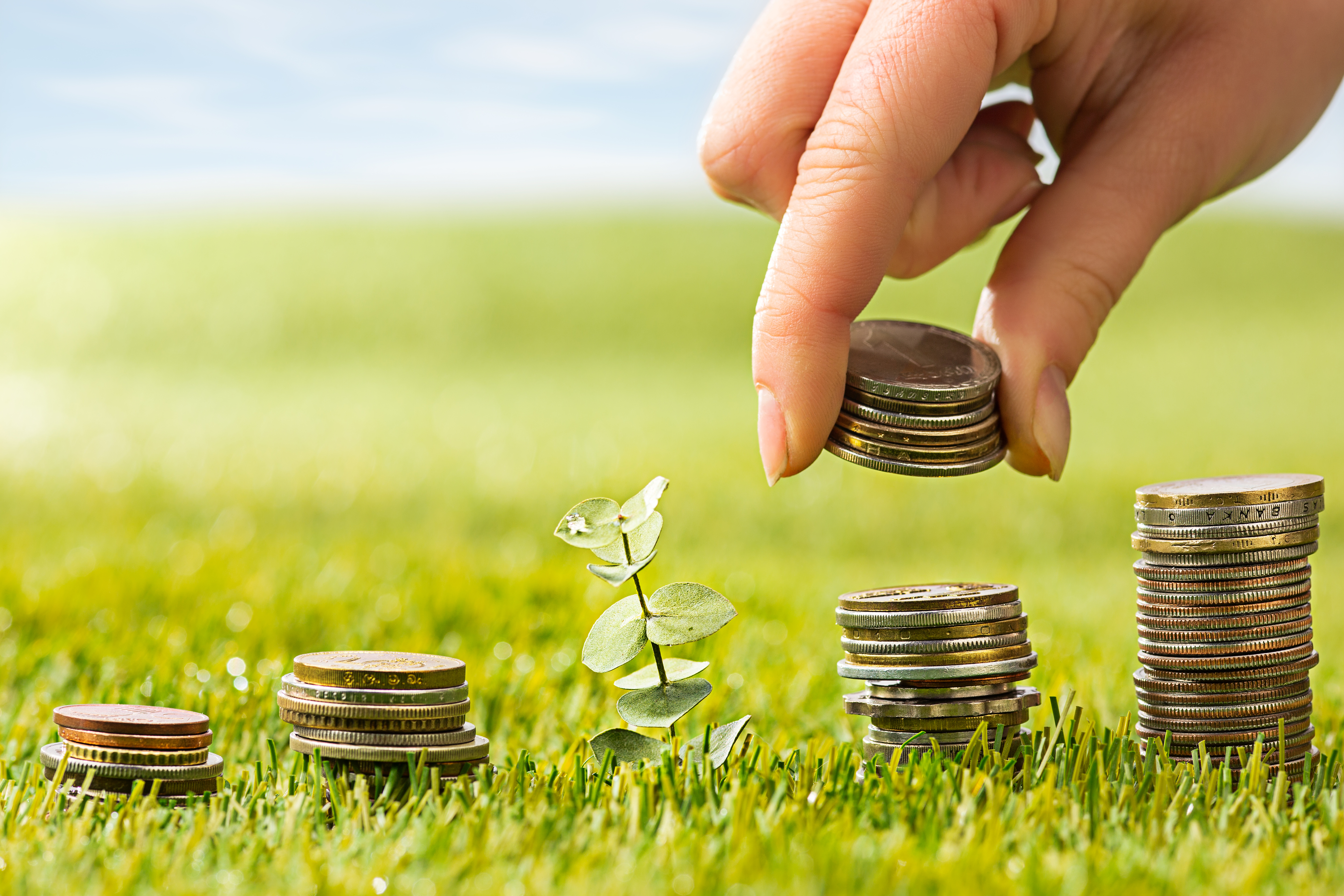 The columns of coins on green grass. Saving and investment financial concept